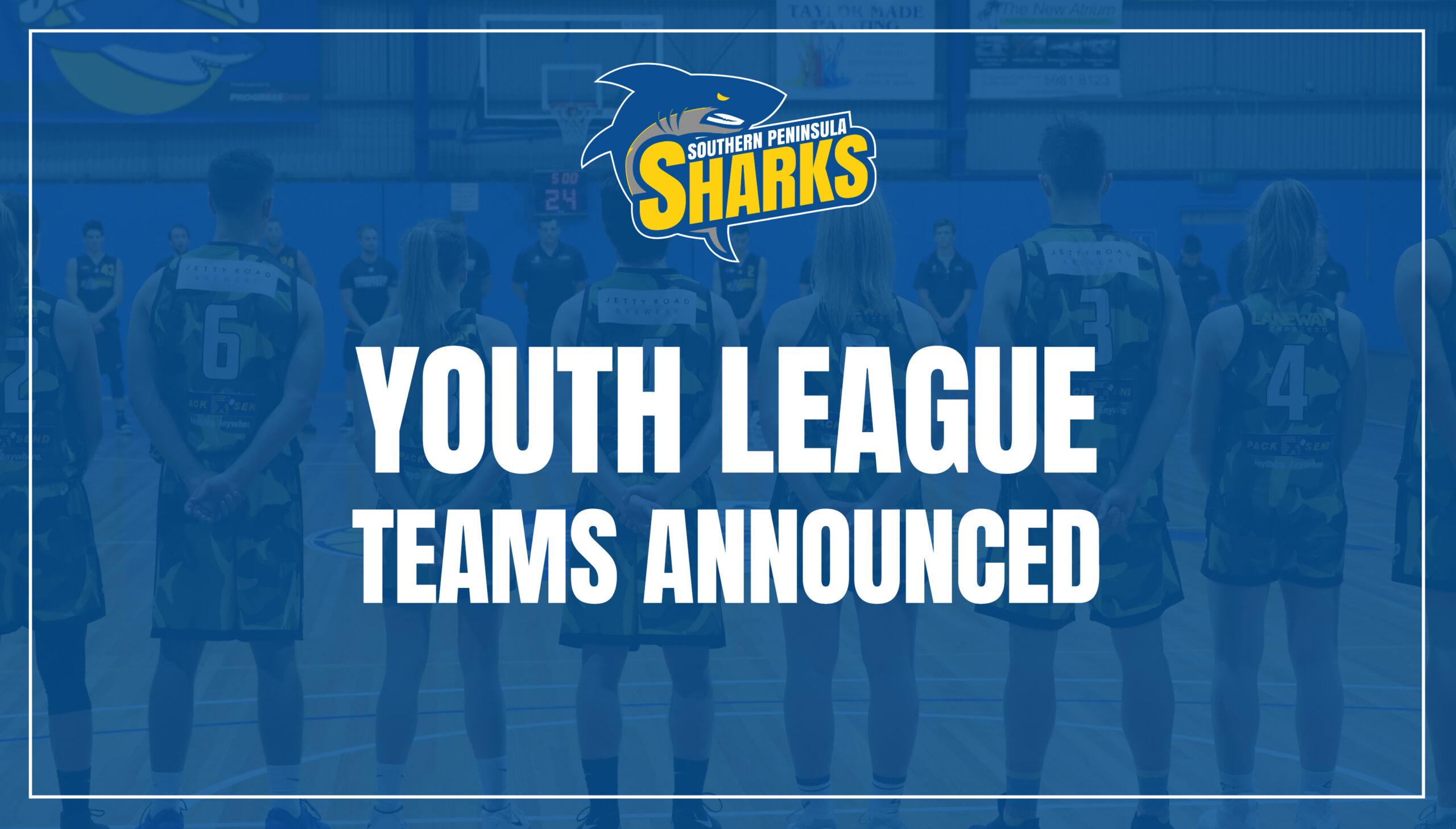 Youth Leauge Teams